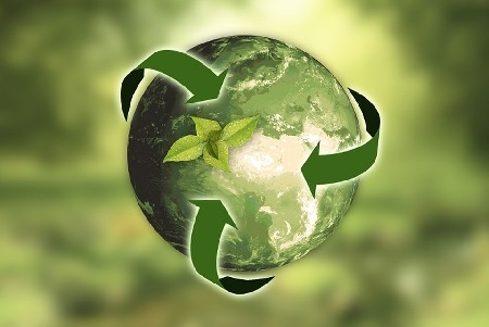 Экология территорий